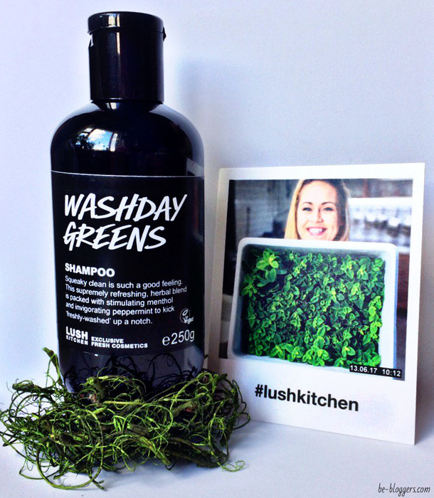 washday greens shampoo lush